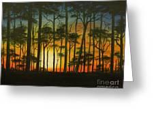 Sunset Over St. Joseph's Peninsula Greeting Card