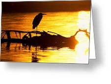 Sunset Still Greeting Card