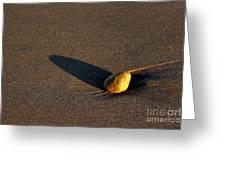 Sunset Stone Greeting Card