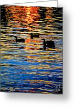 Sunset Swim Greeting Card