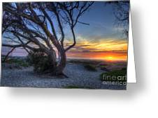 Sunset Swing Greeting Card