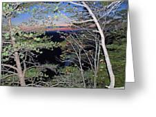 Sunset Thru The Pines Greeting Card