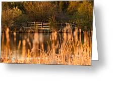 Sunset Tranquility Greeting Card