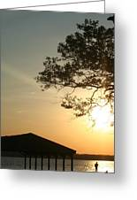 Sunset Under The Tree By The Water Greeting Card