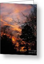 Sunset View From The Path Greeting Card