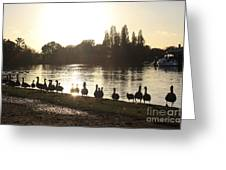 Sunset With Geese On The Thames Greeting Card
