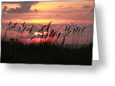 Sunset With Sea Oats Greeting Card