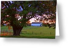 Sunset With Tree Greeting Card