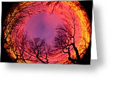 Sunset World Of Trees Greeting Card