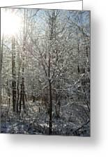 Sunshine And Snow Greeting Card
