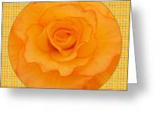 Sunshine Begonia Greeting Card