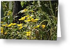 Sunshine Flower 3 Greeting Card