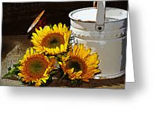 Sunshine From The Garden Greeting Card