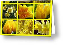 Sunshine Gold Picture Window Greeting Card