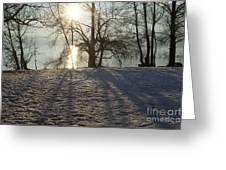 Sunshine In Winter Greeting Card