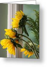 Sunshine On My Face Greeting Card by Paula Rountree Bischoff