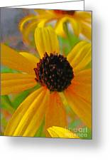 Sunshine On Susan Greeting Card