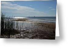 Sunshine On The Bay Greeting Card