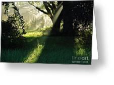 Super Sunbeam Greeting Card