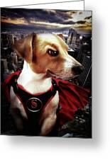 Superdog Greeting Card