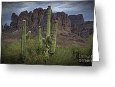 Superstitious Cactus II Greeting Card