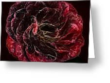 Supreme Rose Greeting Card