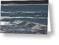 Surf 3 Greeting Card