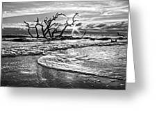 Surf At Driftwood Beach Greeting Card by Debra and Dave Vanderlaan