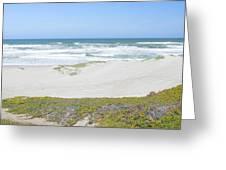 Surf Beach Lompoc California 4 Greeting Card