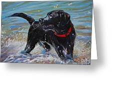 Surf Pup Greeting Card by Molly Poole