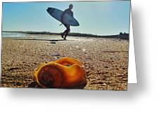 Surfer And Shell Hatteras Lighthouse 3 10/1 Greeting Card