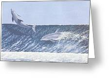 Surfing Dolphins Greeting Card