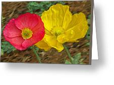 Surprised Poppies Greeting Card