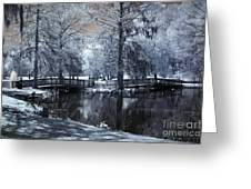 Surreal Dreamy Fantasy Nature Infrared Landscape - Edisto Park South Carolina Greeting Card