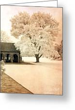 Surreal Ethereal Infrared Sepia Nature Landscape Greeting Card