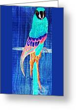 Surreal Parrot Greeting Card