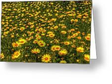 Surreal Spring Greeting Card