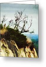 Surviving On The Cliff Top  Greeting Card