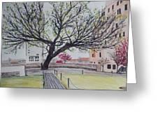 Survivor Tree Greeting Card
