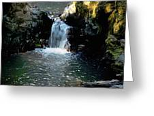 Susan Creek Falls Series 4 Greeting Card