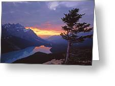 1m3607-sunset Over Peyto Lake Greeting Card