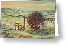 Sussex Stile, Winter, 1996 Greeting Card