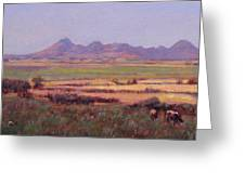 Sutter Buttes In Summer Afternoon Greeting Card
