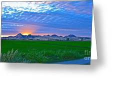 Sutter Buttes Sunset Ray Burst In The Rice Fields  Greeting Card