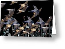 Swallows In The City Greeting Card