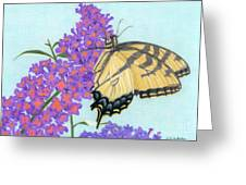 Swallowtail Butterfly And Butterfly Bush Greeting Card