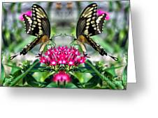 Swallowtail Butterfly Digital Art Greeting Card