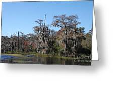 Swamp Serenity Greeting Card