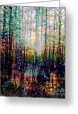 Swamp Colorfest Greeting Card