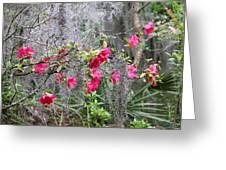 Swamp Garden  Greeting Card